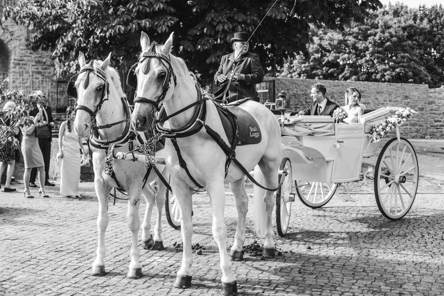 Kutsche Hochzeit