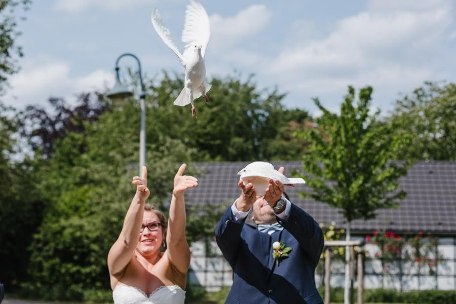 Hochzeit Tauben